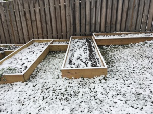 raised beds in snow